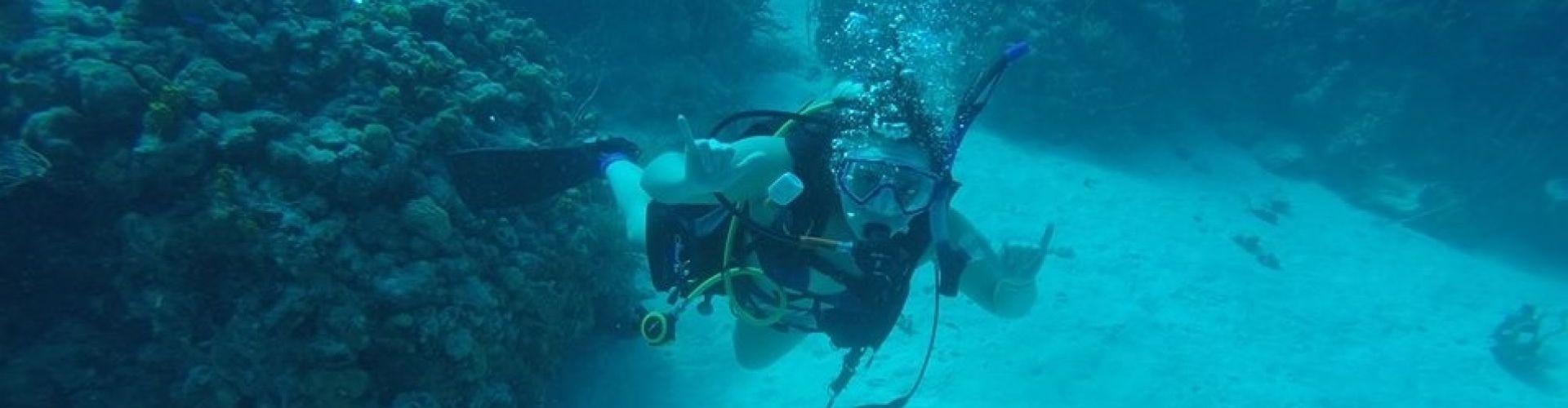 DJ Diving